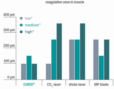 Fig-3b coagulation-zone-muscle